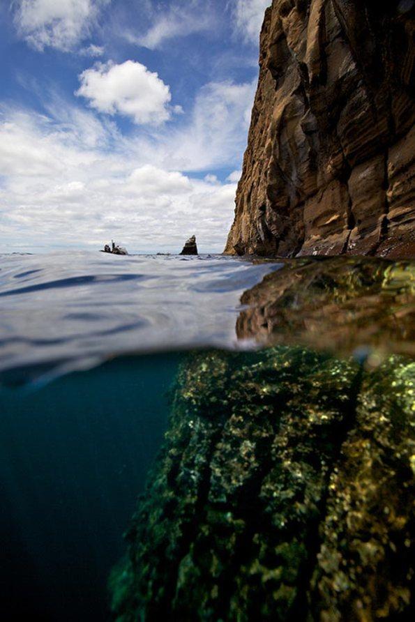 Split View – Galapagos Islands